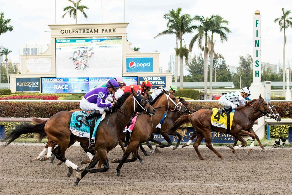 Gulfstream Park Race Track Guide