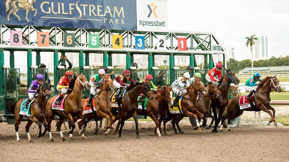 The field leaves the gate for the start of the 67th running of the Florida Derby at Gulfstream Park