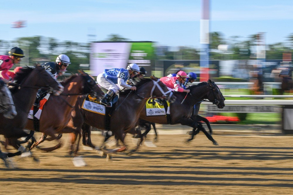 Horse Racing picks at Delaware Park for Wednesday, June 16: You Are Awesome is awesome
