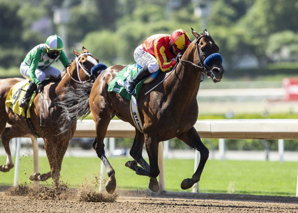 Horse Racing on dirt at Santa Anita