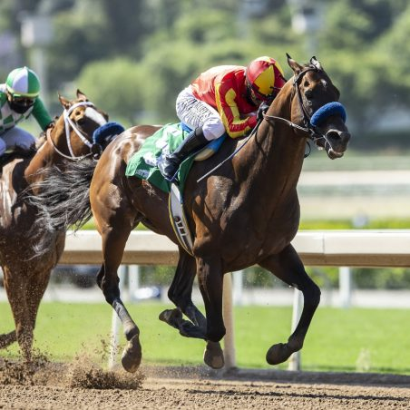 Horse Racing picks at Belmont Park for Friday, June 18: Buzz surrounding Scuttlebuzz