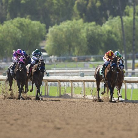 Horse Racing picks at Santa Anita for Sunday, June 20: Bullish on Raging Bull
