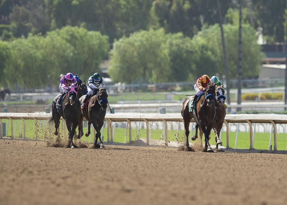 Santa Anita Horse Racing on Dirt