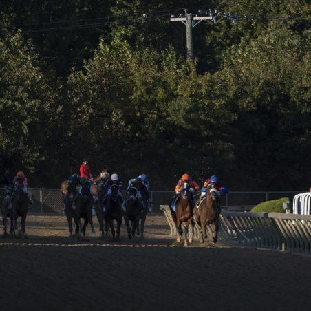 Horse Racing Picks at Indiana Grand for Tuesday, June 8: Mercy ready to show her quality