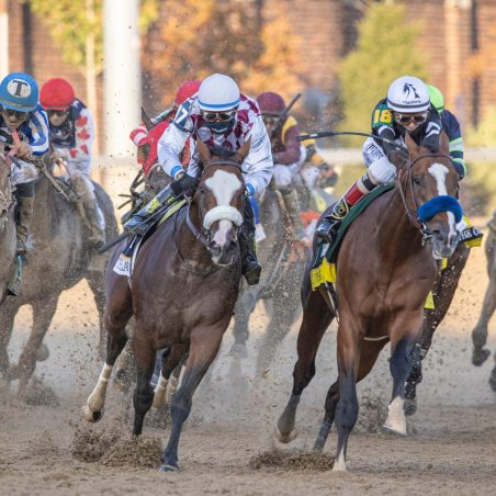 The three best picks for the 2020 Breeders' Cup