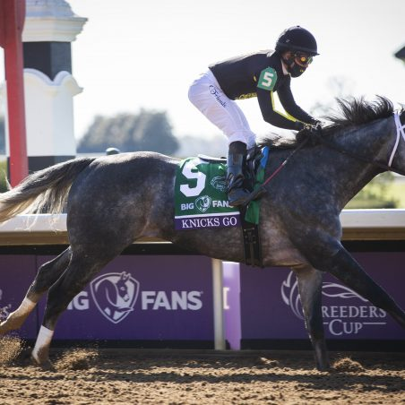 Best horse racing picks and Pick 6 predictions for Saturday's Belmont Stakes card