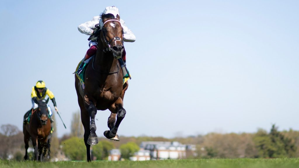 Palace Pier roars home to win the Lockinge Stakes at Newbury