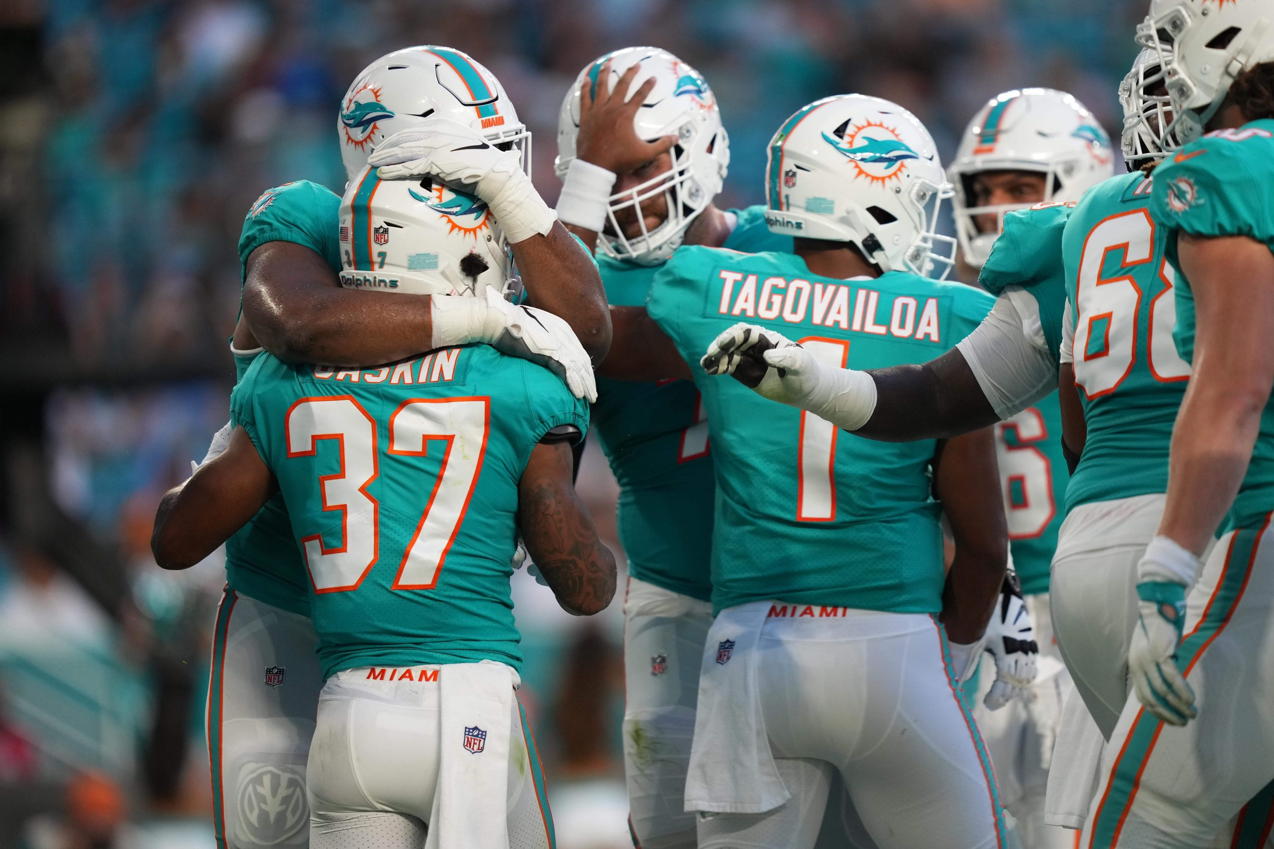 Miami Dolphins running back Myles Gaskin (37) celebrates after scoring a touchdown against the Atlanta Falcons during the first half at Hard Rock Stadium.